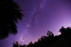 Milky Way. Real Milky Way photo seen through trees Stock Image