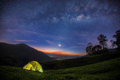 The Milky Way rises over the Tea plantation Stock Image