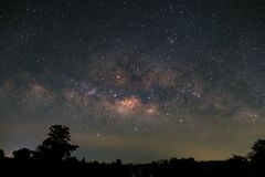 Milky Way and silhouette of tree, Long exposure photograph.with. Grain stock photo