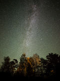 The Milky Way and some trees. Stock Images