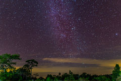 The Milky Way and some trees. Royalty Free Stock Photography