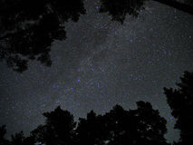 Milky Way stars cassiopeia constellation forest atmosphere Stock Photos