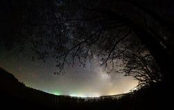 Milky Way Stars  tree. Tree on milky way Stock Photos