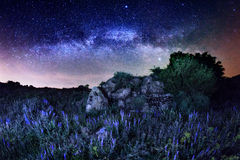 Milky Way. (Summer in Ukraine Stock Photos