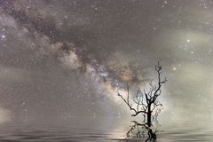 Milky way thailand ,milky way galaxy.Long exposure photograph with grain Royalty Free Stock Photography