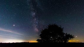 Milky Way Time Lapse 4k. Milky way passes over the night sky, behind silhouette of a tree in foreground stock footage
