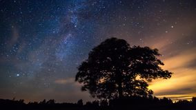 Milky way timelapse stock video
