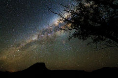 Milky way tree Stock Images