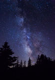 Milky Way at Yosemite National Park. Silhouette of giant evergreen trees in front of the Milky Way at Glacier Point in Yosemite National Park stock images