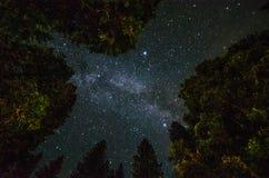 Milky way in yosemite park Stock Image