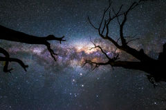 Milkyway Obraz Royalty Free