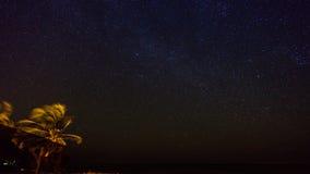 Milkyway boven Grote Kaaiman Royalty-vrije Stock Fotografie