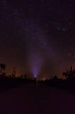 Milkyway boven Grote Kaaiman Royalty-vrije Stock Foto