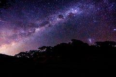 Milkyway en Auckland Fotos de archivo