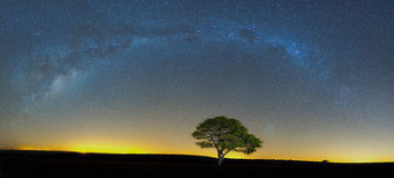 The Milkyway at Ezemvelo. South Africa Royalty Free Stock Photography