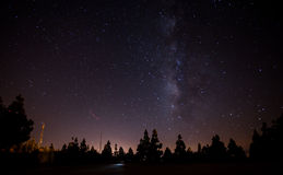 Milkyway on forest Royalty Free Stock Photography