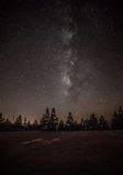 Milkyway on forest Royalty Free Stock Images