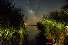 Milkyway from reeds. Milkyway shot from reeds. Kis-Balaton, Hungary Stock Photo
