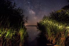 Milkyway from reeds. Milkyway shot from reeds. Kis-Balaton, Hungary Stock Photography
