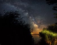 Milkyway from reeds. Milkyway shot from reeds. Kis-Balaton, Hungary Royalty Free Stock Photos