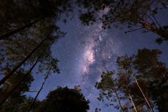 Milkyway. At sillent night Stock Image