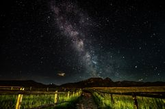 Milkyway. Sky. Night landscape from Poland Stock Images