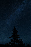 Milkyway with a tree Stock Photography