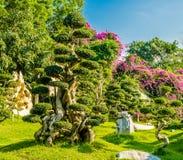 Millón de años de parque de piedra Fotografía de archivo libre de regalías
