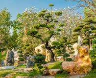 Millón de años de parque de piedra Foto de archivo
