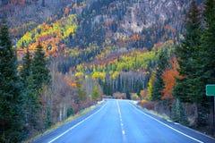 Millón de altas maneras del dólar en otoño Foto de archivo libre de regalías