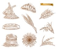 Mill, bread and wheat. Engraving vector icon set stock illustration