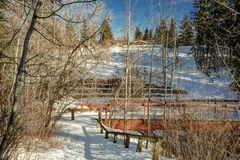 Mill Creek ravine, Edmonton, Alberta, Canada. Access path into ravine with red bridge and retained wall Stock Photography