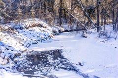 Mill Creek ravine, Edmonton, Alberta, Canada Stock Photo