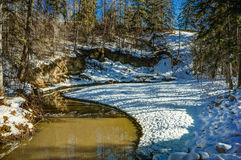 Mill Creek ravine, Edmonton, Alberta, Canada. Mill creek ravine  in winter with open water due to winter thaw Stock Image
