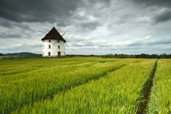 Mill house and barley field. White mill house in field of barley Stock Photo