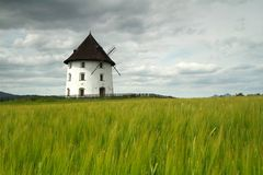 Mill house. Nice white mill house in field with barley Stock Photos