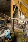 Mill III. Abandoned factory interior. Economic Depression Royalty Free Stock Photos