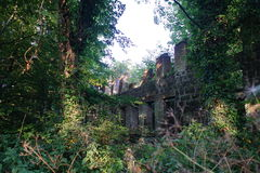 mill opuszczonego Zdjęcia Royalty Free