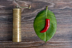Mill and pepper on the leaf of a plant. Mill and pepper on a piece of plant on wooden background Royalty Free Stock Photography