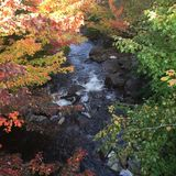 Mill run Stream in Gall Stock Images