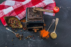 Mill for spices Stock Photography