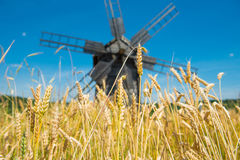 Mill on the wheat field Stock Images