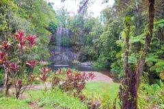 Milla Milla Waterfalls in Atherton Tablelands, Queensland, Australia Royalty Free Stock Photos