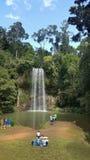 Milla Milla Falls Tablelands Region royalty free stock photos
