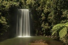 Milla Nilla Falls em Queensland, Austrália fotos de stock