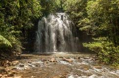 Milla Nilla Falls i Queensland, Australien arkivbild