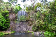 Milla Milla siklawy w Atherton Tablelands, Queensland, Australia zdjęcie royalty free