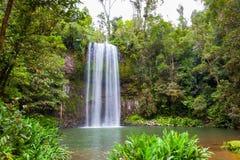 Millaa Millaa Falls in Australia Royalty Free Stock Image