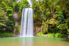 Millaa Millaa Falls in Australia. Millaa Millaa Falls is a heritage-listed plunge waterfall at Theresa Creek Road, Tablelands Region, Queensland, Australia stock photo