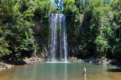 Millaa Millaa Falls in Atherton Tablelands, Australia Royalty Free Stock Photos